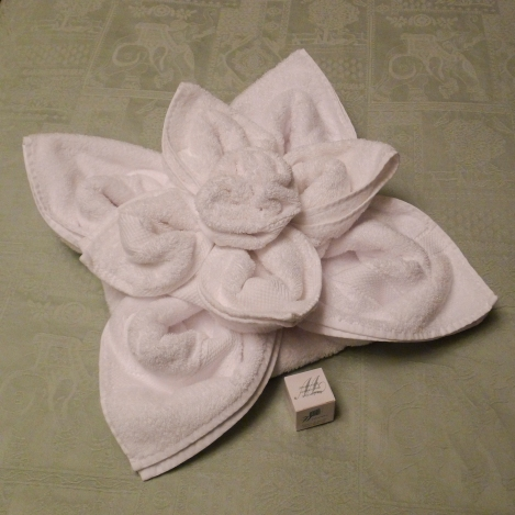 Towel Origami by our Housekeeper